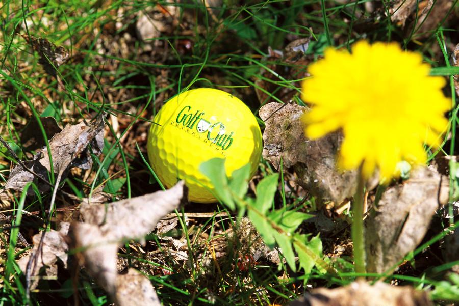 Gallery golfclub petersberg 20120104 1961944786