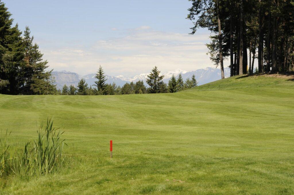 Golfclub Petersberg Fairway 2 Mittel