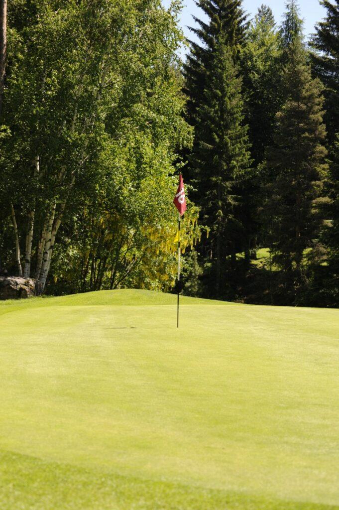Golfclub Petersberg Green 16 Mittel